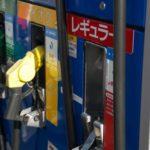地球の化石燃料問題は「ダチョウらんど沖縄」が救う!?