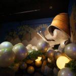 「豊田ホタルの里ミュージアム」で蛍の一生を体験しました