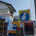 屋根に登る名犬メロンちゃんは今!?「北浦石油」