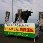 福井県の珍スポットもどき
