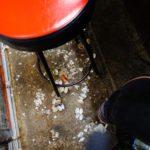 「あば新」あさり汁の貝殻を落として食べれる元祖のお店