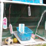 「穴切大神社」でボールをゴールにシュート!なんで?