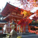 京都に行ったら食べたい!歴史ある珍味3選
