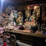 ギプスがたくさん収められるお寺とたくさんの猫「椿堂」