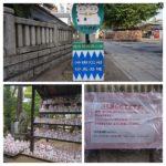 【ありすぎ】東京には招き猫発祥神社が3つもあるぞ