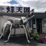 長野県は蜂どころ!「蜂天国」で蜂の巣アートを見た!そして、蜂の巣食った
