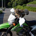 【インプレ】「KLX125」誰にでもナイスなバイク!
