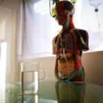 福岡の市街地に心の療養所「不思議博物館分室サナトリウム」