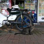 バイクが体にフィットしてないと疲れや身体の痛みが出てくるよ