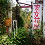 千葉「変な花屋」花屋の概念、壊れる