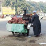 エジプト旅コラム「エジプトの焼き芋は美味くない」(他)